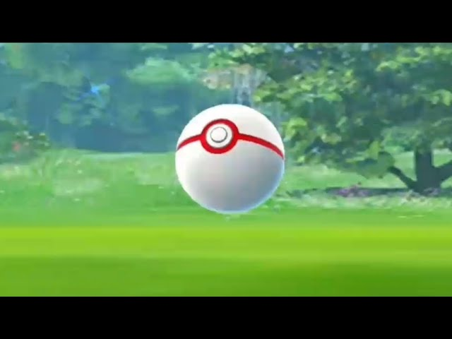 Crazy moment for all trainers in pokemon go